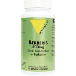 BERBERIS 500MG 60 GEL