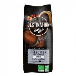 SELECTION 100% ARABICA MOULU 500G CC