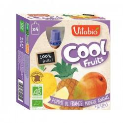 COOL FRUITS POMME MANGUE ANANAS 4X90G