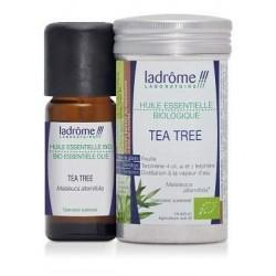 HE TEA TREE 10ML