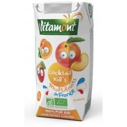 COCKTAIL KID'S MULTIFRUITS FRANCE TETRA 20CL