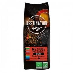 CAFE MEXICO CHIAPAS 100 ARABICA GRAINS