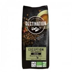 CAFE EXEPTION 1KG GRAINS