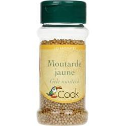 MOUTARDE JAUNE GRAINES 60G