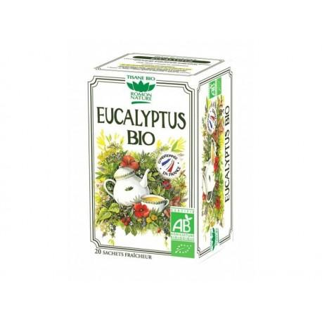 EUCALYPTUS x20 SACHETS